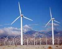 Towards distributed control of wind energy