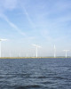 Stochastic Robust Optimization for Unit Commitment with Wind Curtailment