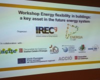 "Workshop ""Energy Flexible Buildings"""