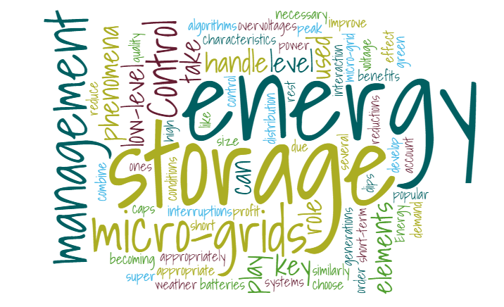 IRP22: Control and management of storage elements in micro-grids